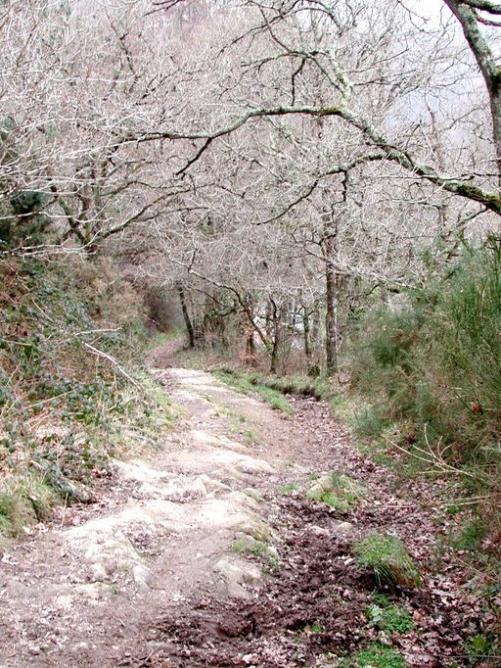 Plouha voie romaine