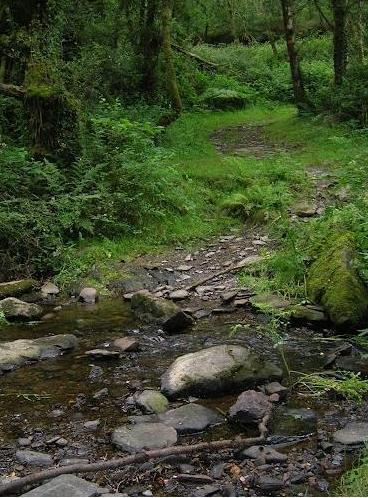 ruisseau-liscuis-gouarec.jpg